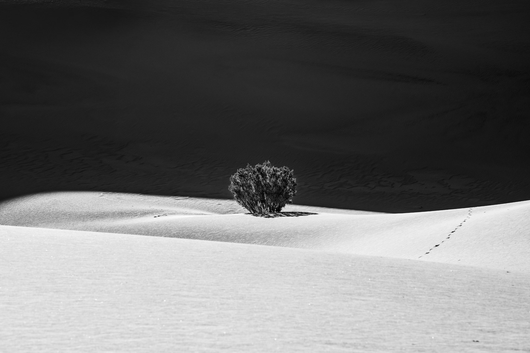 Sand_Dunes_Jussi_Grznar-0231093
